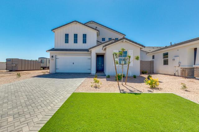 628 E Hazelnut Lane, San Tan Valley, AZ 85140 (MLS #5940960) :: Nate Martinez Team