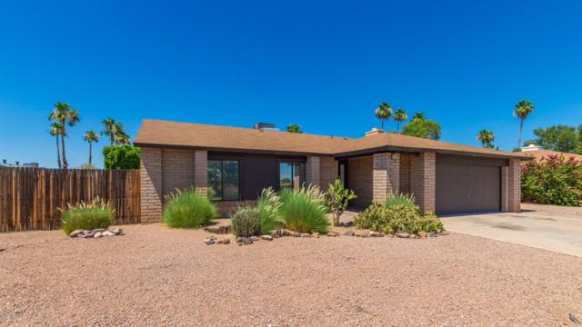 1136 W Pampa Avenue, Mesa, AZ 85210 (MLS #5940969) :: Revelation Real Estate