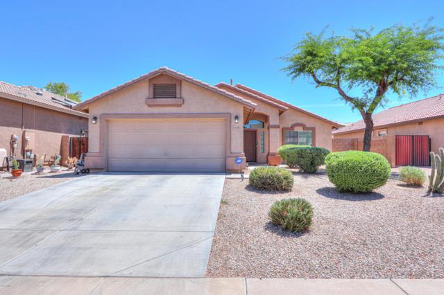 43426 W Chisholm Drive, Maricopa, AZ 85138 (MLS #5940996) :: Revelation Real Estate