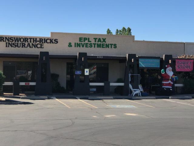 6065 E University Drive, Mesa, AZ 85205 (MLS #5941005) :: The C4 Group