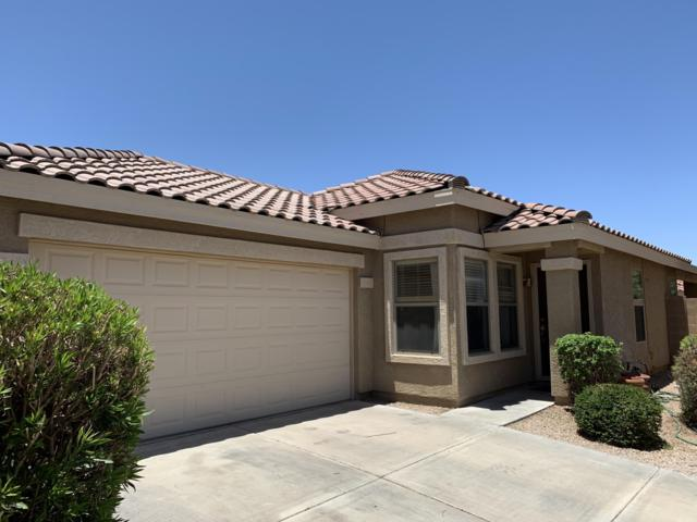 2334 E Hazeltine Way, Chandler, AZ 85249 (MLS #5941047) :: The C4 Group