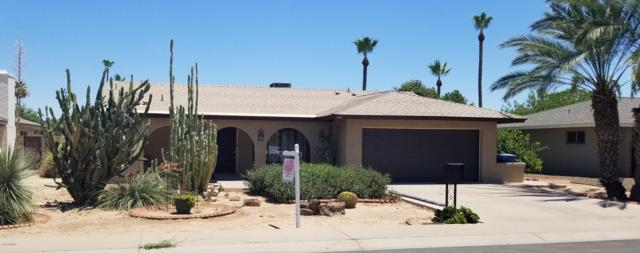 3409 S Bala Drive S, Tempe, AZ 85282 (MLS #5941050) :: The C4 Group