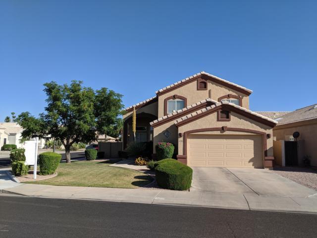 1331 W Seashore Drive, Gilbert, AZ 85233 (MLS #5941057) :: Revelation Real Estate