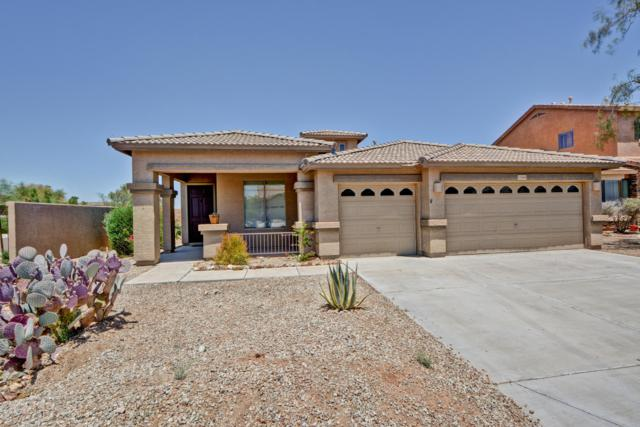17668 W Lavender Lane, Goodyear, AZ 85338 (MLS #5941076) :: Homehelper Consultants