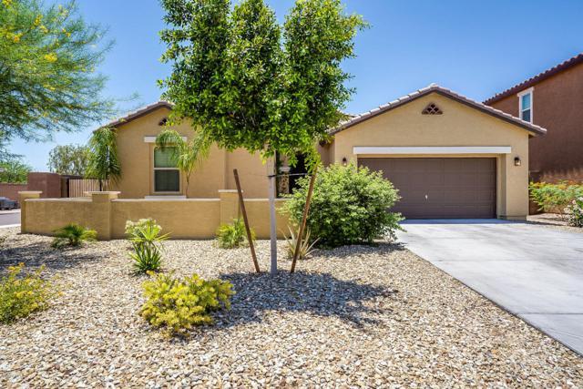 12205 W Davis Lane, Avondale, AZ 85323 (MLS #5941093) :: Occasio Realty