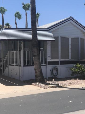 228 S Shawnee Drive, Apache Junction, AZ 85119 (MLS #5941094) :: Lucido Agency