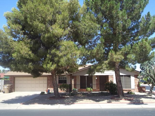 8030 N 104TH Avenue, Peoria, AZ 85345 (MLS #5941096) :: Lucido Agency