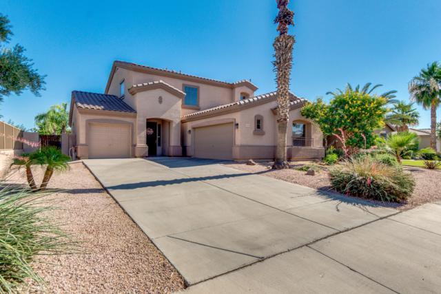3683 E Shannon Street, Gilbert, AZ 85295 (MLS #5941103) :: The C4 Group