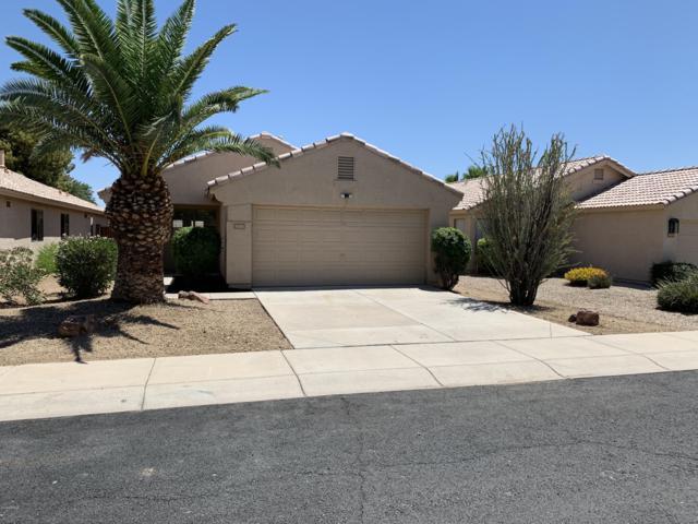 10769 W Monte Vista Drive, Avondale, AZ 85392 (MLS #5941134) :: Occasio Realty