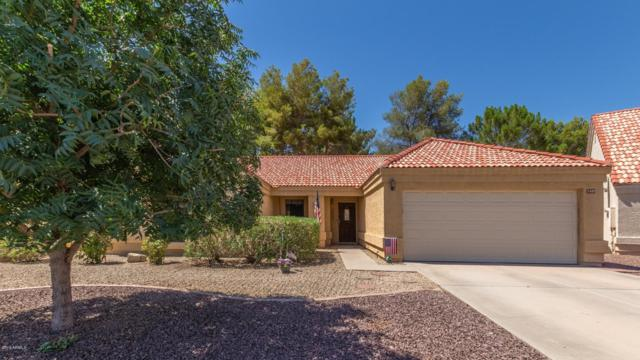 1407 E Redfield Road, Gilbert, AZ 85234 (MLS #5941144) :: Occasio Realty