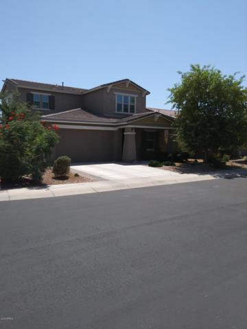 763 S 198TH Lane, Buckeye, AZ 85326 (MLS #5941148) :: Riddle Realty