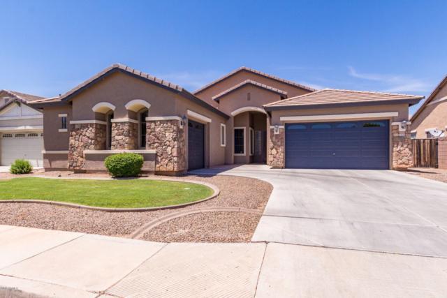 13614 W Verde Lane, Avondale, AZ 85392 (MLS #5941156) :: Occasio Realty