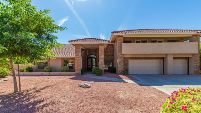 12002 S Tuzigoot Court, Phoenix, AZ 85044 (MLS #5941158) :: Occasio Realty
