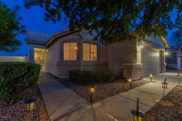 3785 S Joshua Tree Lane, Gilbert, AZ 85297 (MLS #5941161) :: The Everest Team at My Home Group