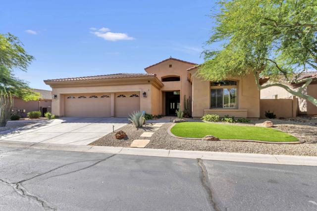 5024 E Desert Vista Trail, Cave Creek, AZ 85331 (MLS #5941169) :: My Home Group