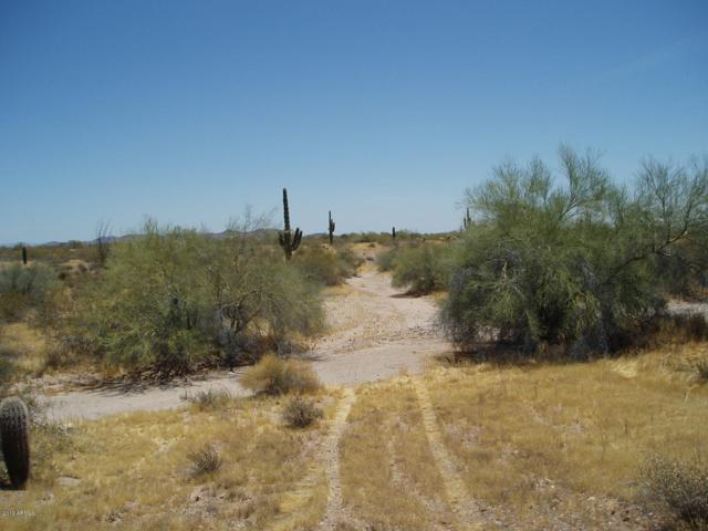 35379 W Olesen Road, Unincorporated County, AZ 85361 (MLS #5941190) :: Riddle Realty Group - Keller Williams Arizona Realty