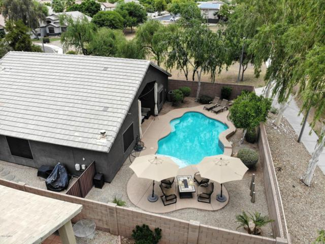 877 N 165TH Avenue, Goodyear, AZ 85338 (MLS #5941197) :: The Everest Team at My Home Group