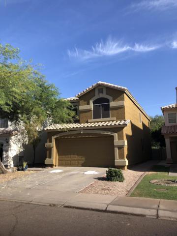 1511 E South Fork Drive, Phoenix, AZ 85048 (MLS #5941206) :: Yost Realty Group at RE/MAX Casa Grande
