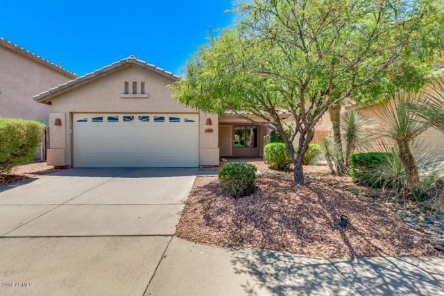 20238 N 32ND Place, Phoenix, AZ 85050 (MLS #5941211) :: Brett Tanner Home Selling Team