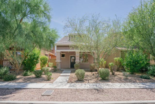 20027 N 50TH Avenue, Glendale, AZ 85308 (MLS #5941224) :: Occasio Realty