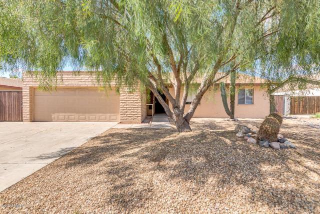 5332 W Saguaro Drive, Glendale, AZ 85304 (MLS #5941227) :: Devor Real Estate Associates