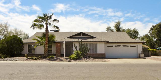6125 W Poinsettia Drive, Glendale, AZ 85304 (MLS #5941241) :: Devor Real Estate Associates