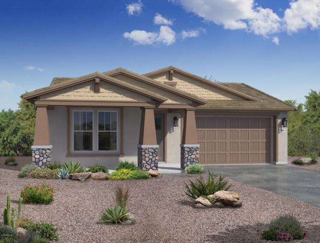 10113 E Wavelength Avenue, Mesa, AZ 85212 (MLS #5941261) :: Riddle Realty
