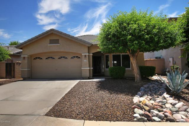 11625 W Madison Street, Avondale, AZ 85323 (MLS #5941267) :: Devor Real Estate Associates