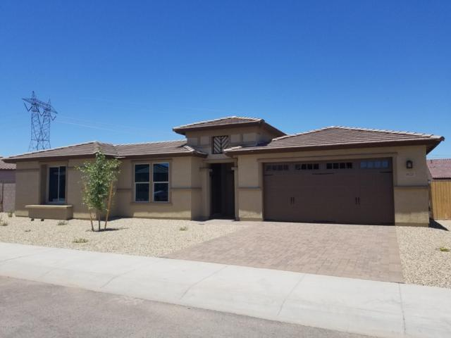 18120 W Cassia Way, Goodyear, AZ 85338 (MLS #5941279) :: Homehelper Consultants