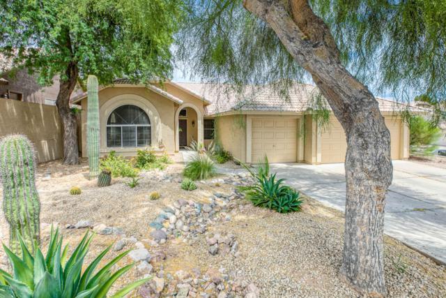 15013 S 9TH Street, Phoenix, AZ 85048 (MLS #5941285) :: My Home Group
