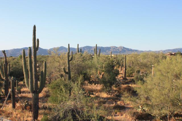 30600 N Pima Road #54, Scottsdale, AZ 85266 (MLS #5941352) :: Devor Real Estate Associates
