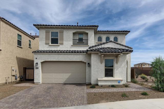 3286 E Sands Drive, Phoenix, AZ 85050 (MLS #5941414) :: Brett Tanner Home Selling Team