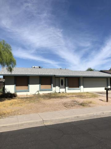 732 N Santa Anna, Mesa, AZ 85201 (MLS #5941422) :: CC & Co. Real Estate Team