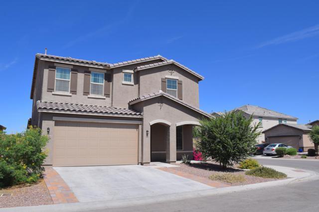 35746 N Pommel Place, Queen Creek, AZ 85142 (MLS #5941428) :: Riddle Realty
