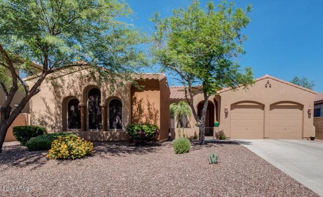 23826 N 24TH Place, Phoenix, AZ 85024 (MLS #5941437) :: Occasio Realty