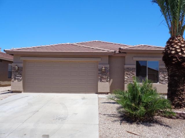 43554 W Bedford Drive, Maricopa, AZ 85138 (MLS #5941455) :: Lucido Agency