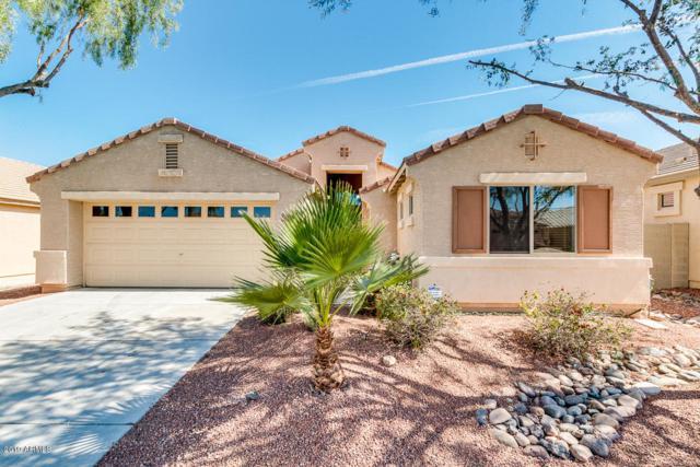 17555 W Columbine Drive, Surprise, AZ 85388 (MLS #5941483) :: Occasio Realty