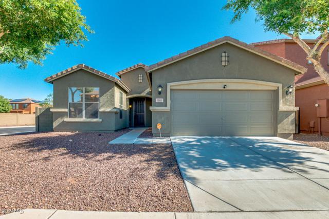 11841 W Villa Hermosa Lane, Sun City, AZ 85373 (MLS #5941538) :: Occasio Realty
