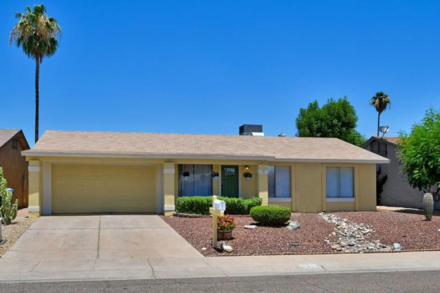 3716 E Dahlia Drive, Phoenix, AZ 85032 (MLS #5941551) :: The Bill and Cindy Flowers Team