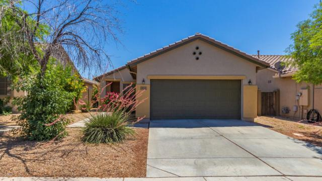 39521 N Harbour Town Way, Anthem, AZ 85086 (MLS #5941558) :: The Daniel Montez Real Estate Group