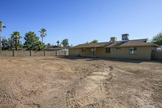 18241 N 20TH Parkway, Phoenix, AZ 85023 (MLS #5941568) :: Occasio Realty