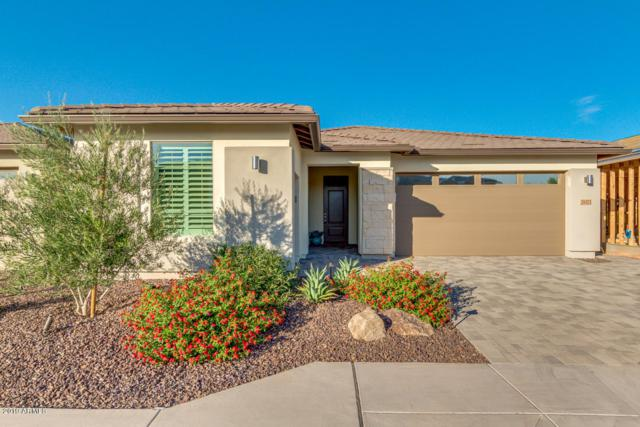 29373 N Tarragona Drive, Peoria, AZ 85383 (MLS #5941574) :: The Daniel Montez Real Estate Group