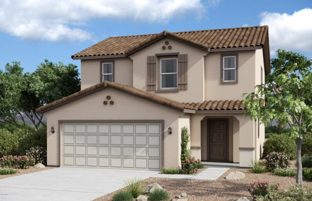 18142 N Christopher Drive, Maricopa, AZ 85138 (MLS #5941582) :: The Bill and Cindy Flowers Team