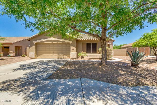 10338 E Idaho Avenue, Mesa, AZ 85209 (MLS #5941583) :: Occasio Realty