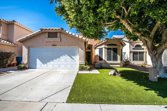 4442 E Bannock Street, Phoenix, AZ 85044 (MLS #5941589) :: Occasio Realty