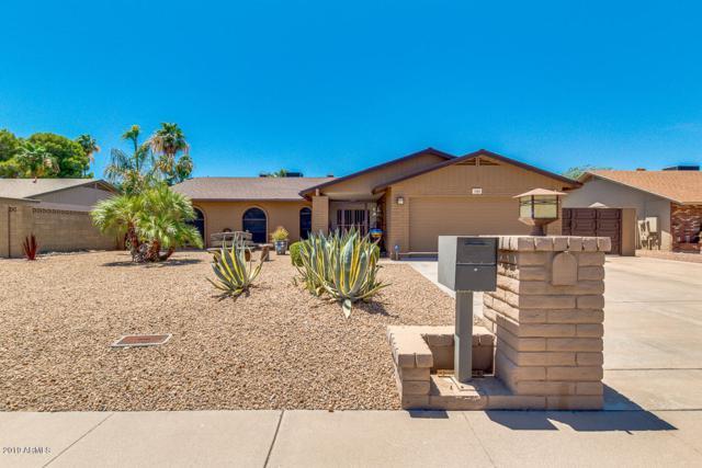 1809 W Banff Lane, Phoenix, AZ 85023 (MLS #5941613) :: Revelation Real Estate