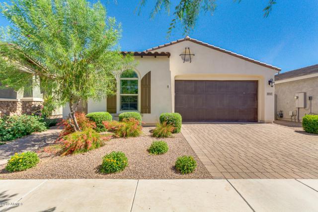 10117 E Thatcher Avenue, Mesa, AZ 85212 (MLS #5941621) :: Riddle Realty
