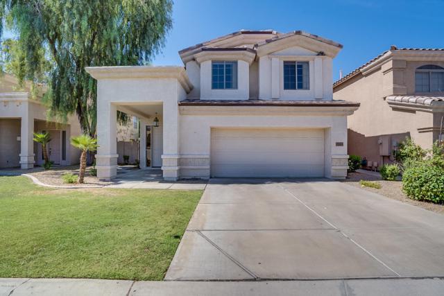 2051 W Ironwood Drive, Chandler, AZ 85224 (MLS #5941622) :: Occasio Realty