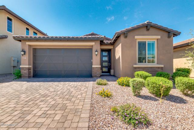 10055 E Theorem Drive, Mesa, AZ 85212 (MLS #5941623) :: Occasio Realty