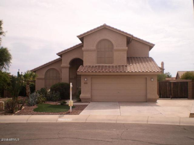 14717 W Doll Court, Surprise, AZ 85374 (MLS #5941624) :: Occasio Realty